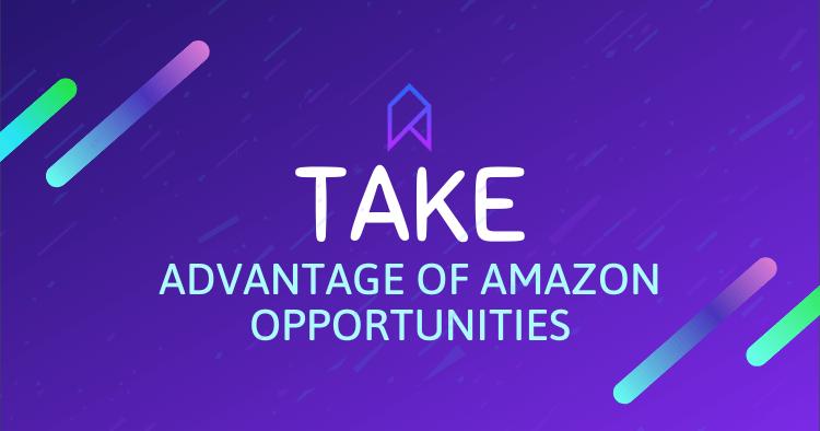 Tips to Take Advantage Of Amazon Opportunities